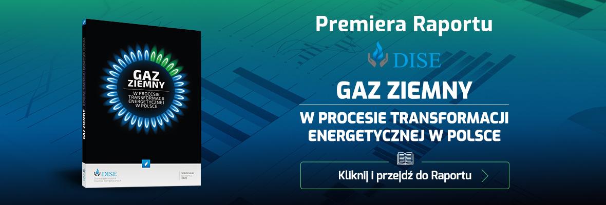 Raport DISE - Gaz Ziemny
